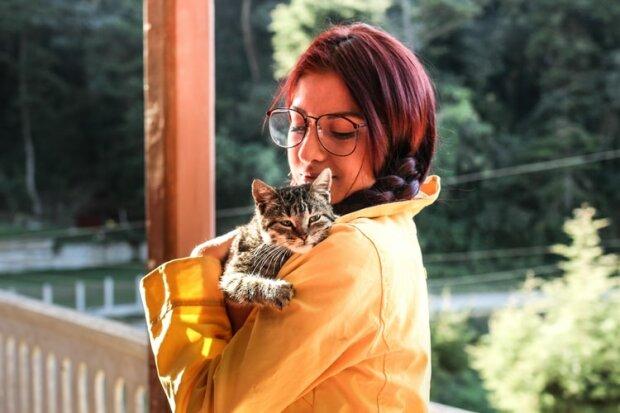 Коти проти собак: хто вірніший своїм господарям, результати дослідження вас здивують