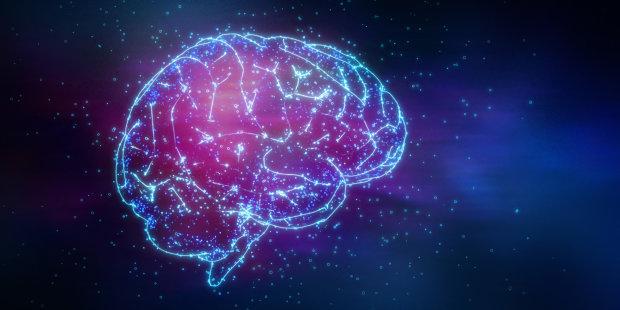 Все, что нужно знать о нейронах