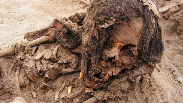Закалывали и вырезали сердца: в Перу умертвили сотни детей