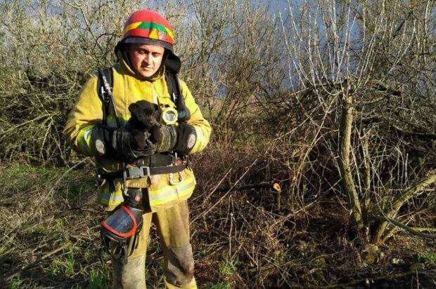 Рятувальник, фото: Facebook ДСНС