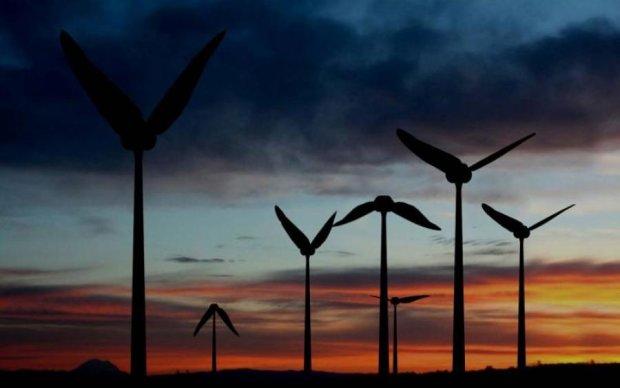 Колибри помогут добывать энергию ветра