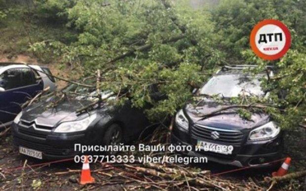 Жертвы непогоды: в Киеве деревья уничтожают припаркованные авто
