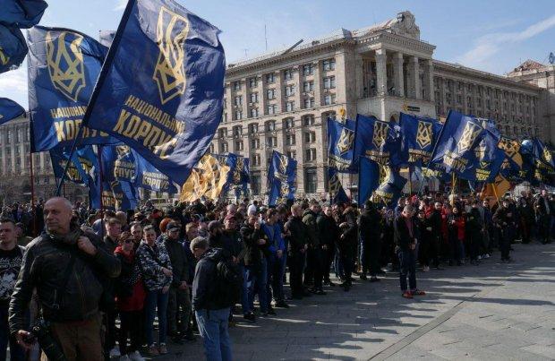 Активисты взбунтовались против Порошенко и заставили свиней летать: видео