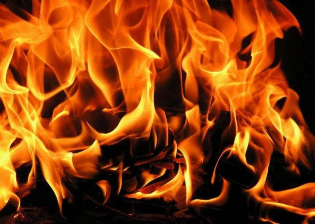 """""""Я бы сожгла планету"""": украинка оставила жуткое послание перед адской расправой"""