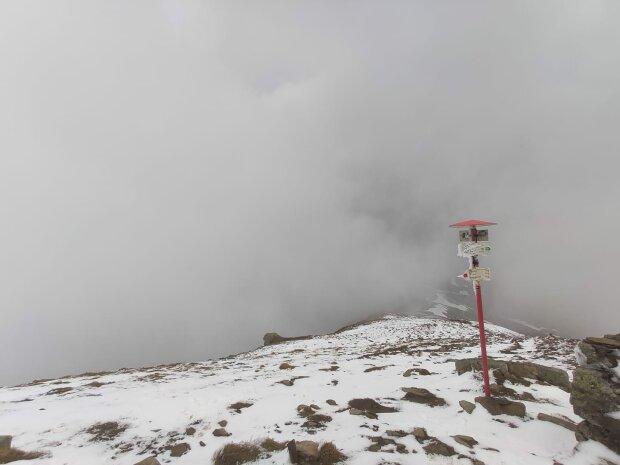 Кінець травня перетворився на середину зими — Карпати замело снігом