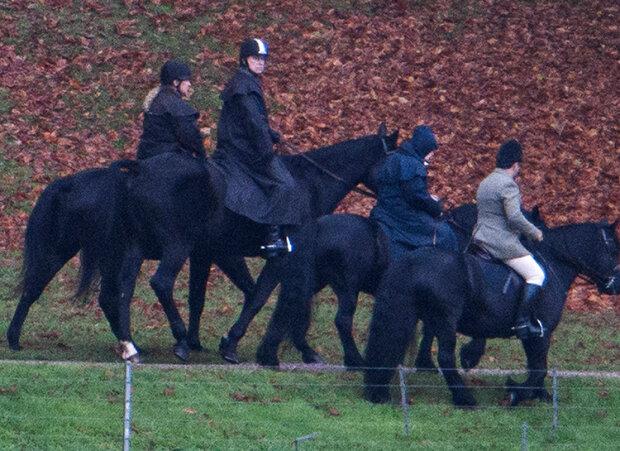 Принц Ендрю і британська королева на кінній прогулянці, BBC Newsnight