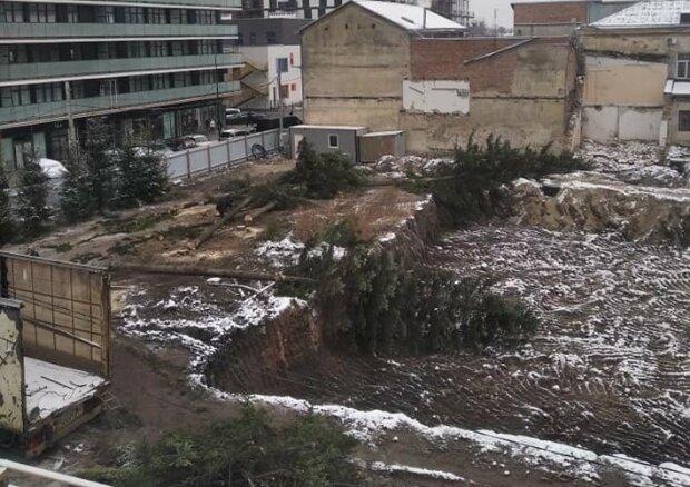 """Львовян оставили без елок перед праздниками, гремит скандал: """"Это люди Козловского"""""""