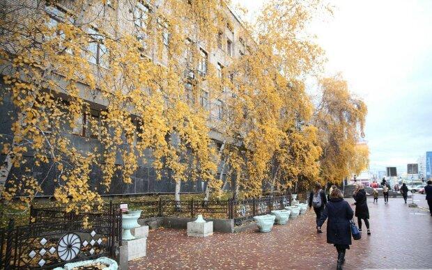 Вінничани, можна розслабитись, синоптики обнадіяли погодою на 11 жовтня