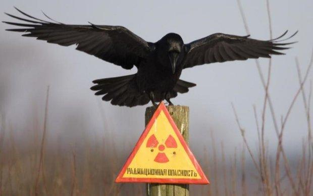Головне за ніч: бідні українці та серіал про Чорнобиль
