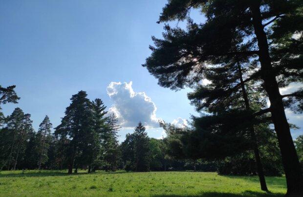 Фото: Знай.uа, погода в серпні