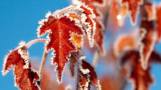 Харків приморозить у перший день зими: до чого городянам готуватися 1 грудня