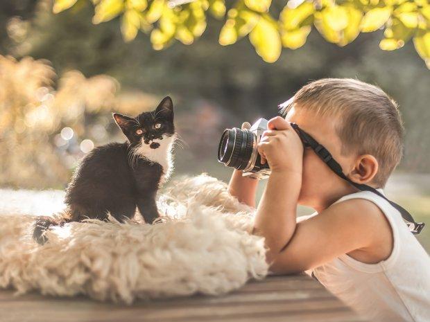 Лікуємо осінню депресію котами: унікальні можливості домашніх тварин