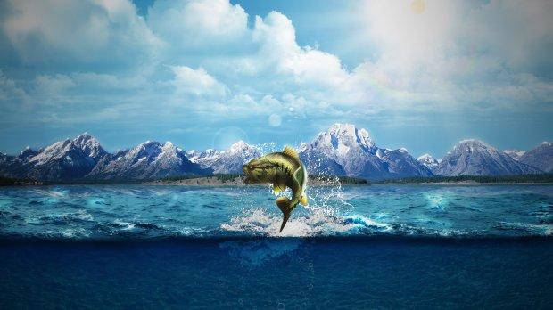 У морських глибинах вчені виявили безсмертне чудовисько, розміри вражають: відео
