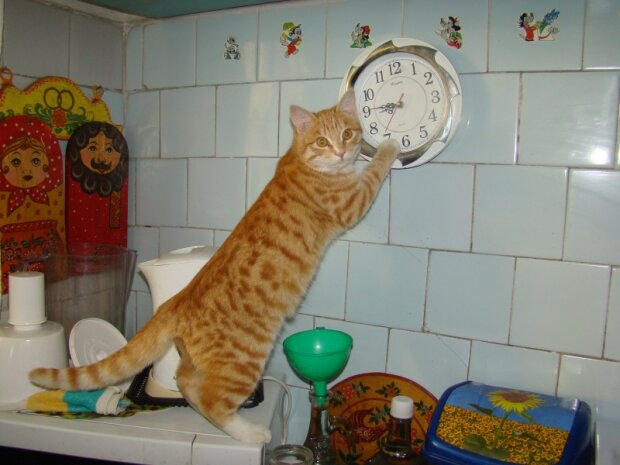 Перехід на зимовий час: коли переводять годинник в Україні і як до цього підготуватися