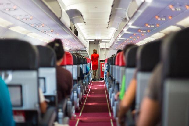 """Дика парочка в літаку влаштувала пікантну сцену, борт ледь витримав: """"Стюардеса майстер"""", відео 18+"""
