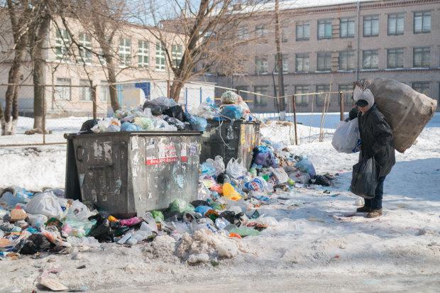 Гігантські щури заполонили центр Києва, люди шоковані