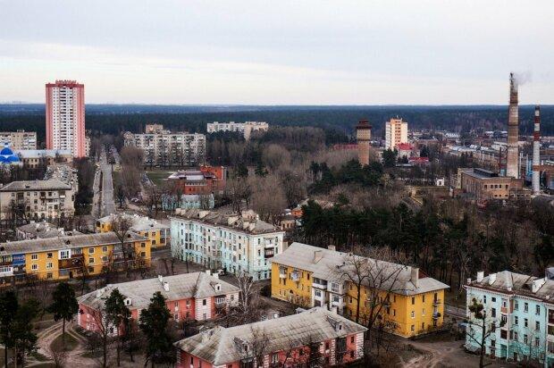 """В українських лісах аномальна зима розбудила шиплячу істоту: """"В жодному разі не можна чіпати"""""""