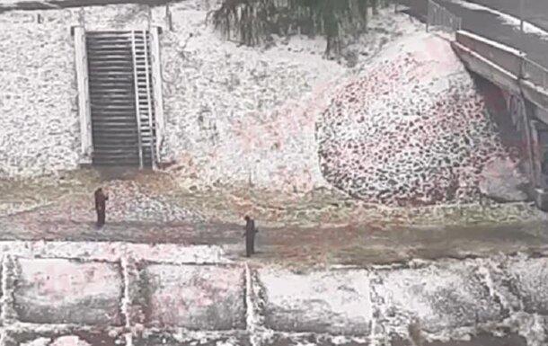 Киевлянин покосил траву под снегом, скриншот Facebook