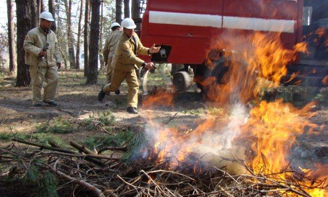 Харківщина у вогні: десятки пожеж за добу, рятувальники збилися з ніг