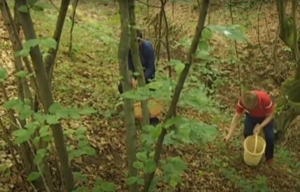 грибники, скриншот из видео