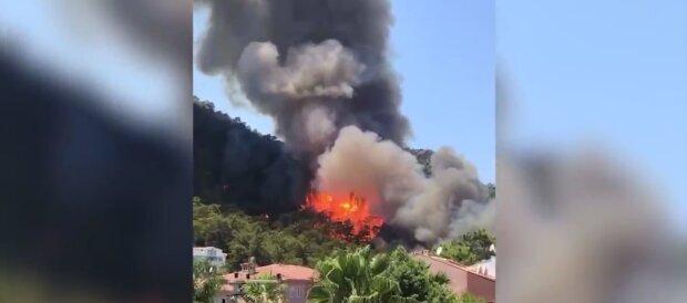 Лісові пожежі в Туреччині, скріншот: Telegram
