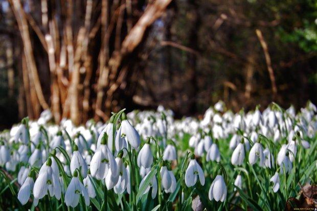 19 апреля: какой сегодня праздник - история и традиции