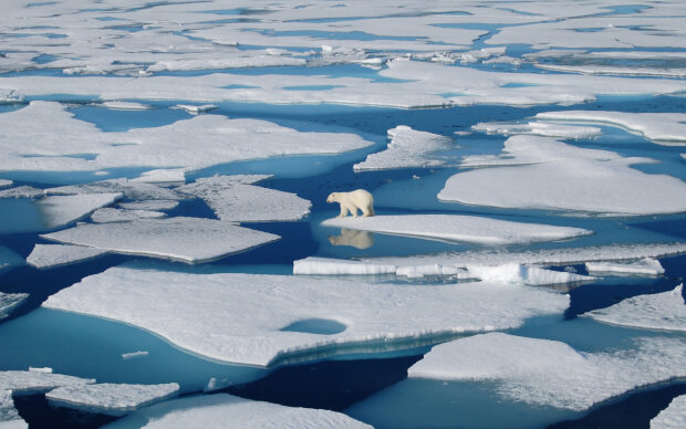 Арктика на межі зникнення: що сталося з одним із найсуворіших регіонів Землі, фото