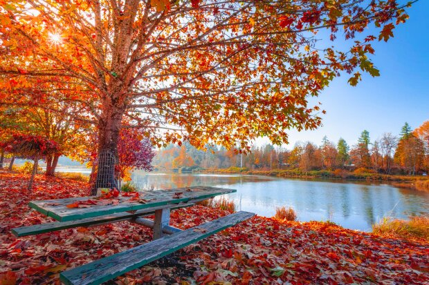 Погода на 18 октября: готовьте на ночь теплые одеяла