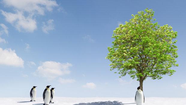 Найден способ остановить глобальное потепление: человечество спасут вещества