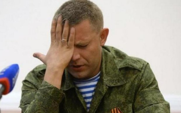 """Скоро в декрет: Захарченка підловили на """"вагітності"""""""