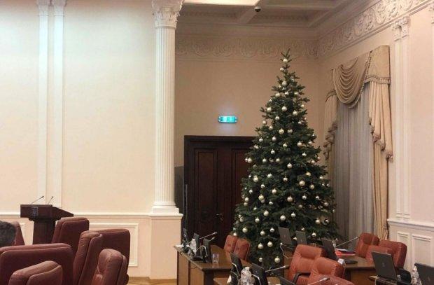 Заседание Кабмина парализовала аномальная елка: видео