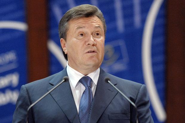 Янукович исчез в Киеве: разобрали на дрова и забыли навсегда