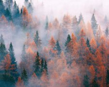 Погода в Україні, фото: RU.BEST-WALLPAPER.NET