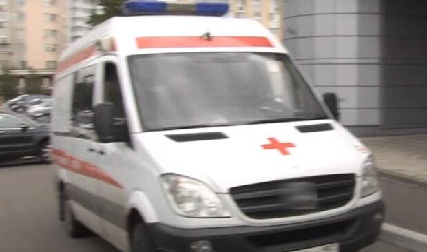 Тернопільщину атакувала нова зараза - переляканий чоловік вбив кота, щоб захистити сім'ю