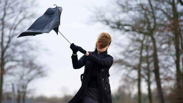 Погода на завтра: в Украине ветер с дождем разгуляются на всю катушку