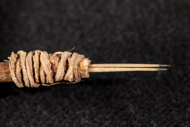Забивались до рождения Христа: археологи обнаружили первобытные тату-инструменты