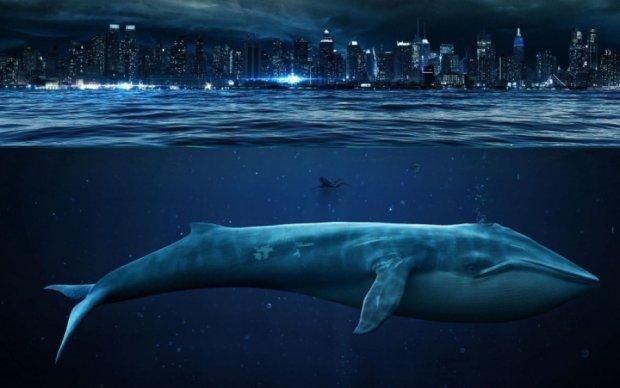"""Смертельная игра """"Синий кит"""" добралась до британской полиции"""