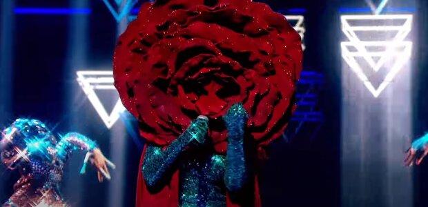 """Троянда на"""" масці"""", скріншот: Youtube"""