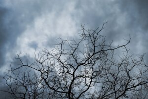 Погода в Украине, фото: pxhere