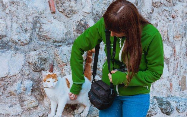 Львовские живодеры превратили подвал на кошачье кладбище: пытают и оставляют умирать, - волосы дыбом