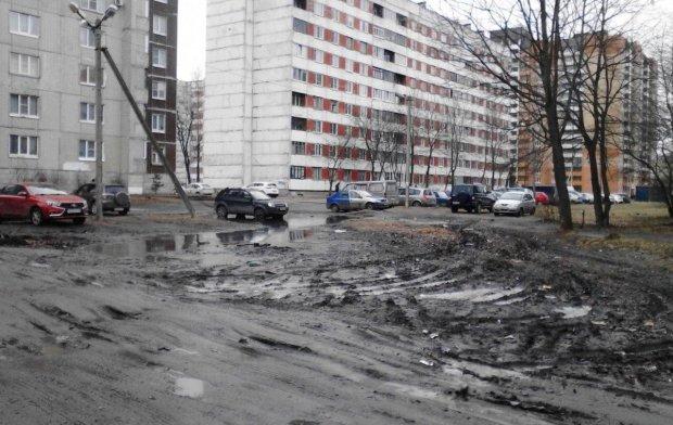 Погода на 31 января: аномальное тепло превратит Украину в огромную груду грязи
