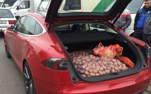 Картопля в Tesla / фото : Топжир