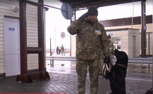 """""""Слава Украине!"""" - пограничники натренировали самого патриотичного пса, видео"""