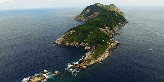 Змеиное логово посреди океана: что известно о Кеймада-Гранди
