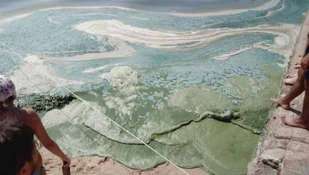"""В Одесі зазеленіло море: пекельний сморід вигнав людей з води, навіть риби """"пакують валізи"""""""