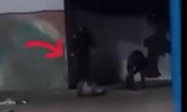 Вандалы, фото: скриншот из видео