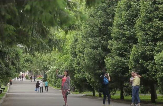 Прогулянка парком, скріншот