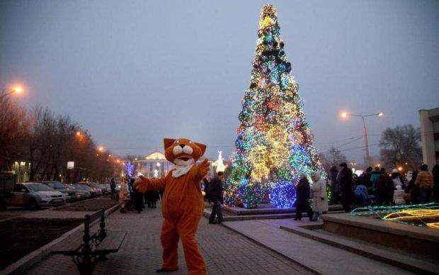 Новогоднее чудо в Запорожье: сотни авто и рекорд Украины