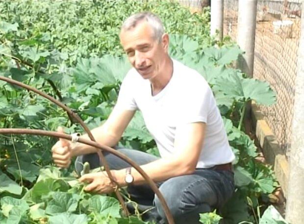 Вирощуємо огірки, скріншот YouTube
