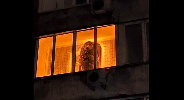 """В Киеве посланника древней цивилизации """"поселили"""" на балконе многоэтажки - вместо белья и старых лыж"""